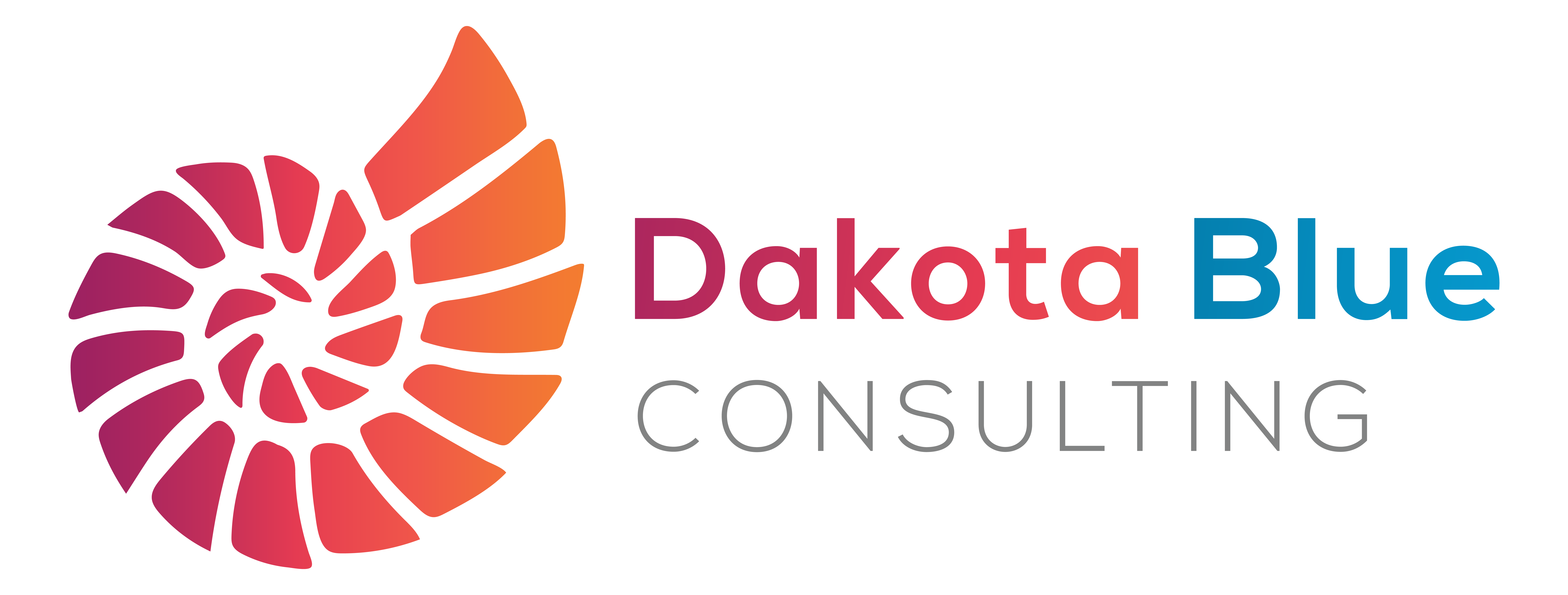 Dakota Blue Consulting.com